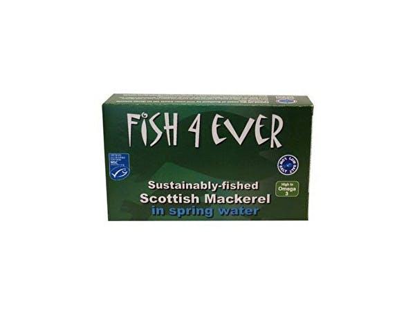Fish 4 Ever  Scottish Mackerel In Spring Water